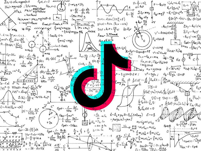by knowing the basics of tiktok algorithm, you'll be able to reach more audiences on this medium.